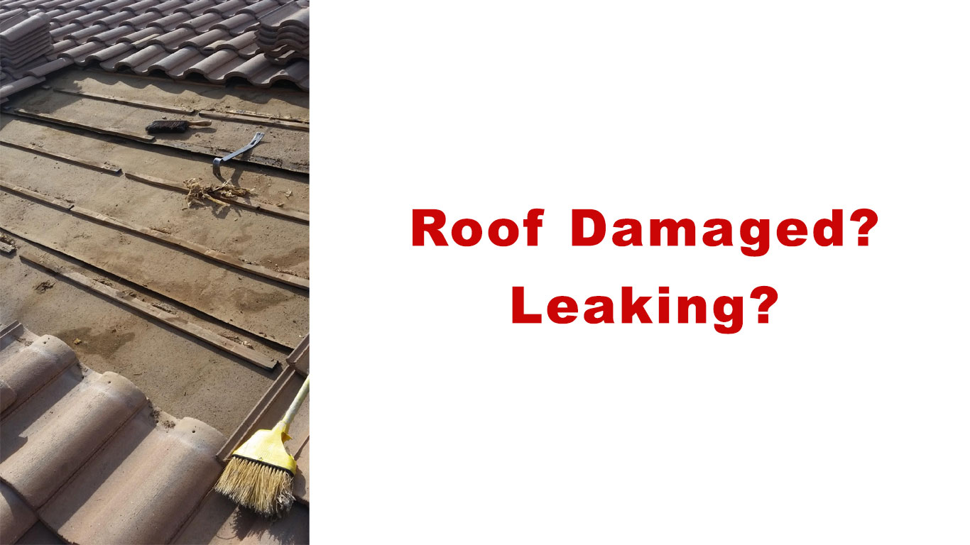 Roof damaged? Leaking?